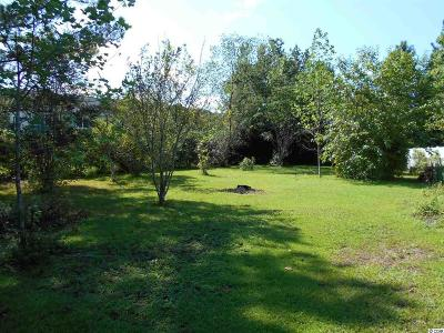 Horry County Residential Lots & Land For Sale: 4297 Bradford Creek Circle