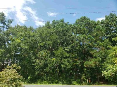 Horry County Residential Lots & Land For Sale: Lot 7 Yaupon Ave.