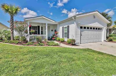 Conway Single Family Home For Sale: 210 Lakeside Crossing Dr.