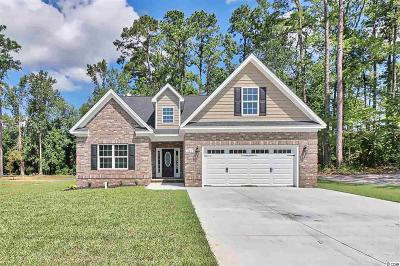 Aynor SC Single Family Home For Sale: $289,000