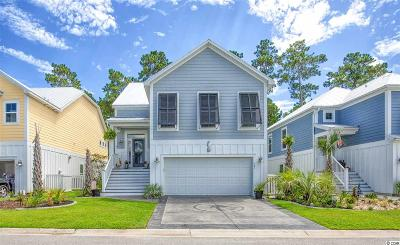 Horry County Single Family Home For Sale: 181 Splendor Circle