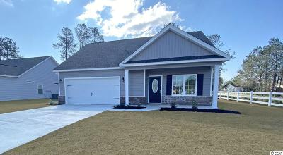 Conway Single Family Home For Sale: 100 Palm Terrace Loop