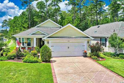 Horry County Single Family Home For Sale: 701 Bay Hill Ct.
