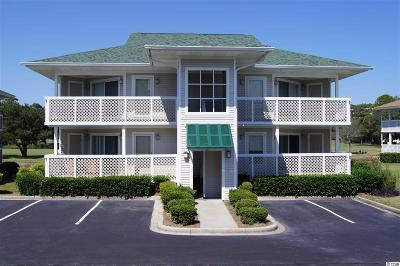 Horry County Condo/Townhouse For Sale: 301 Shorehaven Dr. #17A