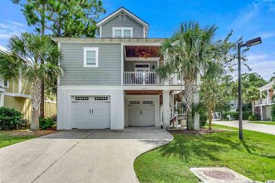 Pawleys Island Single Family Home For Sale: 176 Natures View Circle