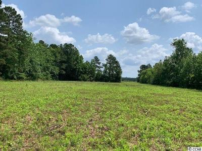 Brunswick County, New Hanover County, Georgetown County, Horry County Residential Lots & Land For Sale: 7.80 Acres Red Bluff Rd.