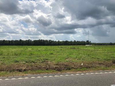 Loris Residential Lots & Land For Sale: Tbd W Highway 19