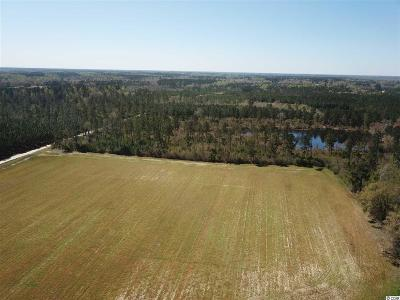 Loris Residential Lots & Land For Sale: Carriage Dr.