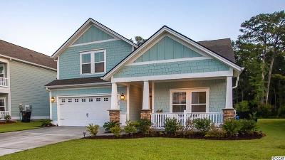 Pawleys Island Single Family Home Active Under Contract: 210 Southgate Ct.
