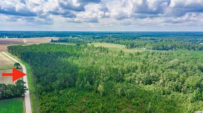 Loris Residential Lots & Land For Sale: Tbd 41.6 Ac Riverbend Rd.