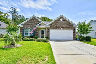 Conway Single Family Home For Sale: 361 Ridge Point Dr.