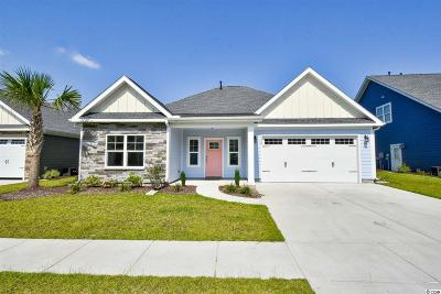 North Myrtle Beach Single Family Home For Sale: 1119 Doubloon Dr.