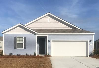 Myrtle Beach Single Family Home For Sale: 1725 Promise Pl.