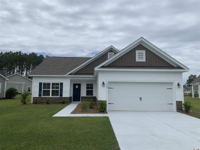 Conway Single Family Home For Sale: 552 Hillsborough Dr.