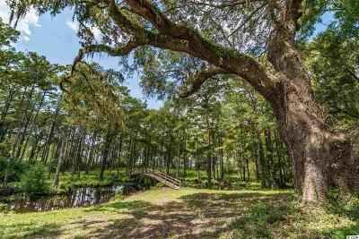 Pawleys Island Residential Lots & Land For Sale: Lot A Joseph Isaac Way
