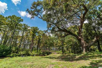 Pawleys Island Residential Lots & Land For Sale: Lot B Old Waccamaw Dr.