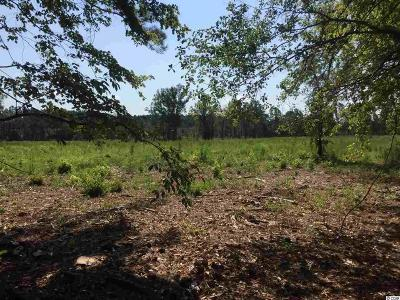 Aynor Residential Lots & Land For Sale: 890 Horry Rd.