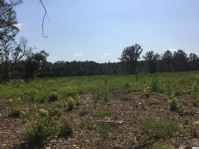 Aynor Residential Lots & Land For Sale: 4770 Enoch Rd.
