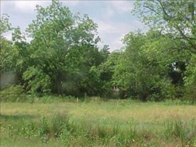 Gilbert SC Residential Lots & Land For Sale: $155,000