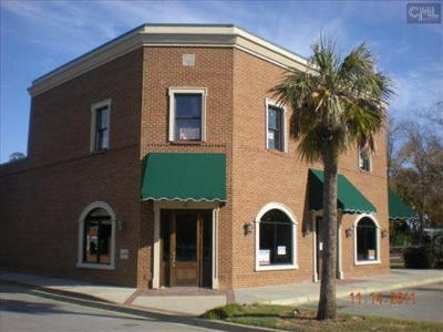 Leesville SC Commercial For Sale: $400,000