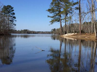 Batesburg, Leesville Residential Lots & Land For Sale: 477 Hutto Island