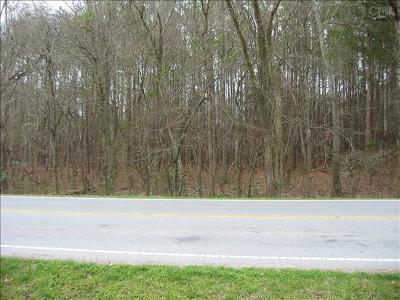 Lexington County Residential Lots & Land For Sale: Amicks Ferry