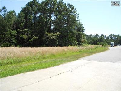 Lexington County Residential Lots & Land For Sale: 260 East Boundary