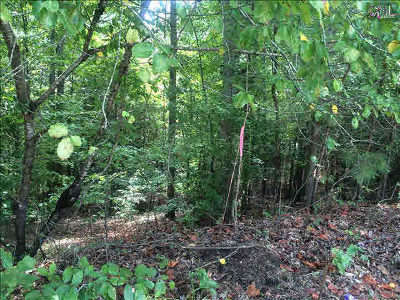 Chestnut Hill Plantation Residential Lots & Land For Sale: 10 Fairlake