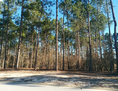 Elgin Residential Lots & Land For Sale: 148 Island View