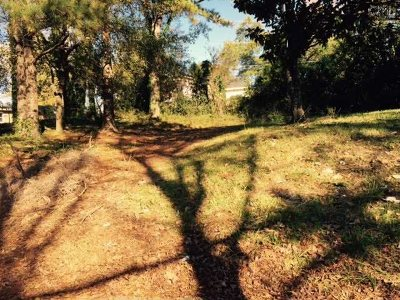 Earlewood Residential Lots & Land For Sale: 81 Riverview