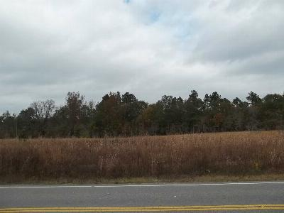 Monetta, Ridge Spring, Wagener, Johnston, Pelion, Newberry, Ward Residential Lots & Land For Sale: Jim Spence