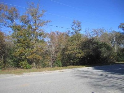 Lexington Residential Lots & Land For Sale: 100 Buck Corley