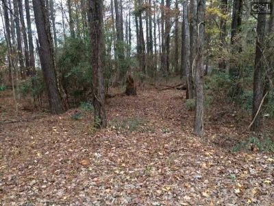 Lexington County, Newberry County, Richland County, Saluda County Residential Lots & Land For Sale: 600 Newberry