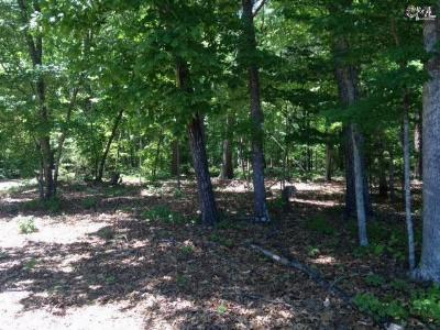 Chapin Residential Lots & Land For Sale: 1316 Dreher Island