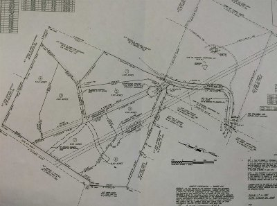Chapin Residential Lots & Land For Sale: O Courtland