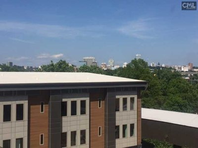 West Columbia Townhouse For Sale: 17 City View