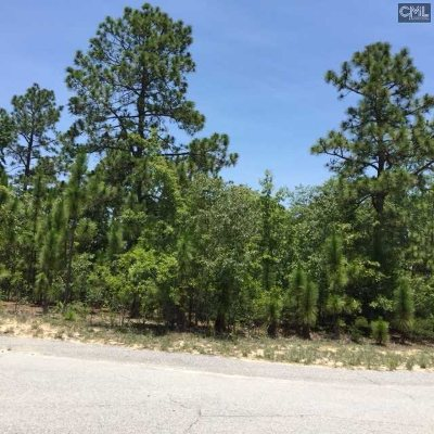 Commercial Lots & Land For Sale: 906 Carolina