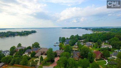 Single Family Home For Sale: 249 Country Lake