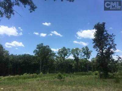 Residential Lots & Land SOLD: 3187 Duncan Road