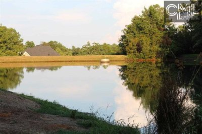 Irmo Residential Lots & Land For Sale: 122 Ascot Ridge
