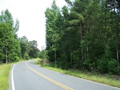 Blythewood SC Residential Lots & Land For Sale: $99,900