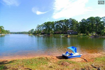 Lexington County, Newberry County, Richland County, Saluda County Single Family Home For Sale: 124 Pine Point