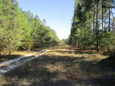 Residential Lots & Land For Sale: Blue Poppy