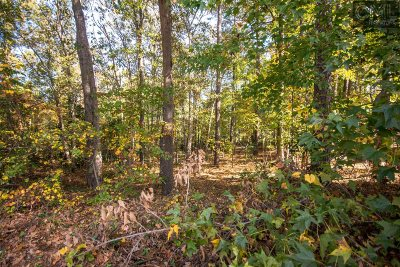 Elgin SC Residential Lots & Land For Sale: $10,000