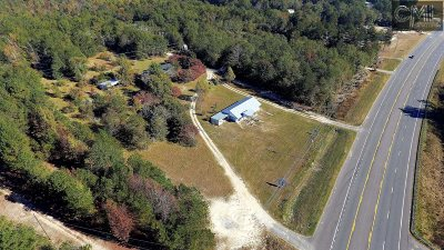 Leesville SC Commercial For Sale: $325,000