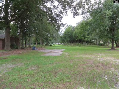 Lexington County Residential Lots & Land For Sale: 232 E Columbia