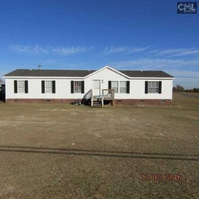 Lexington County, Richland County Single Family Home For Sale: 221 State Pond