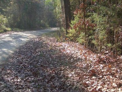 Lexington County Residential Lots & Land For Sale: Parcel B Haltiwanger