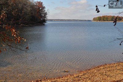 Lexington County, Richland County Residential Lots & Land For Sale: 307 Regatta