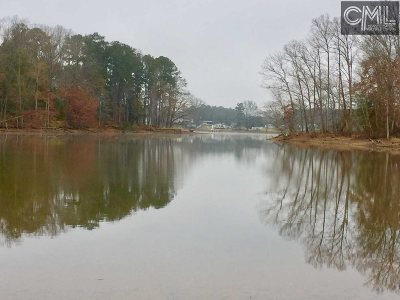 Lexington County, Newberry County, Richland County, Saluda County Residential Lots & Land For Sale: Dailey Creek Point